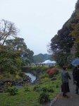 園遊会の会場