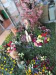 井口コミュニティセンター入り口の草花がアレンジされた小庭